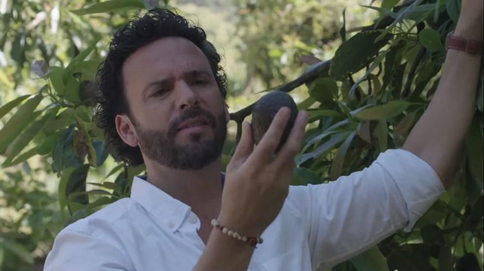Chef Oropeza y Asociación de Productores de Aguacate se alían para destacar la importancia del consumo de aguacates - Captura de pantalla
