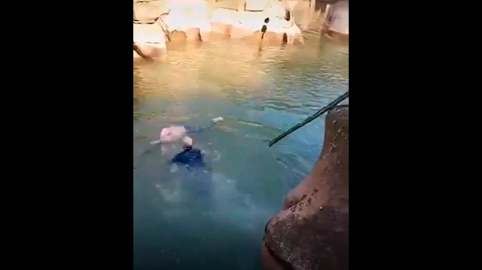 #Video Cónsul británico salva a joven de ahogarse en río de China - El cónsul británico de China, Stephen Ellison, salvó a una joven que se ahogaba en el río de Chongqing. Foto Captura de pantalla