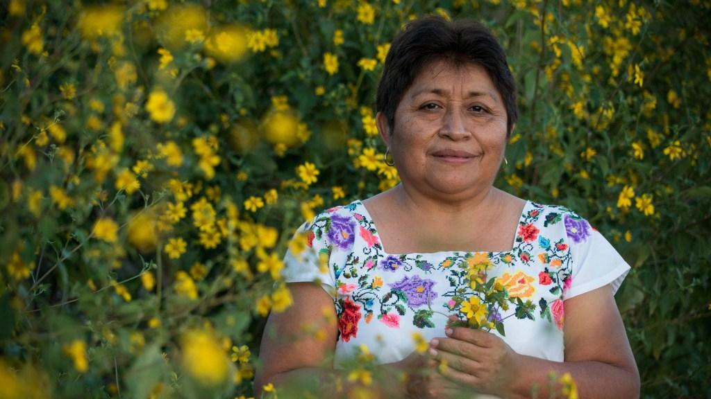 Reconocen a la activista maya Leydy Pech con el Premio Goldman - Leydy Pech. Foto de EFE
