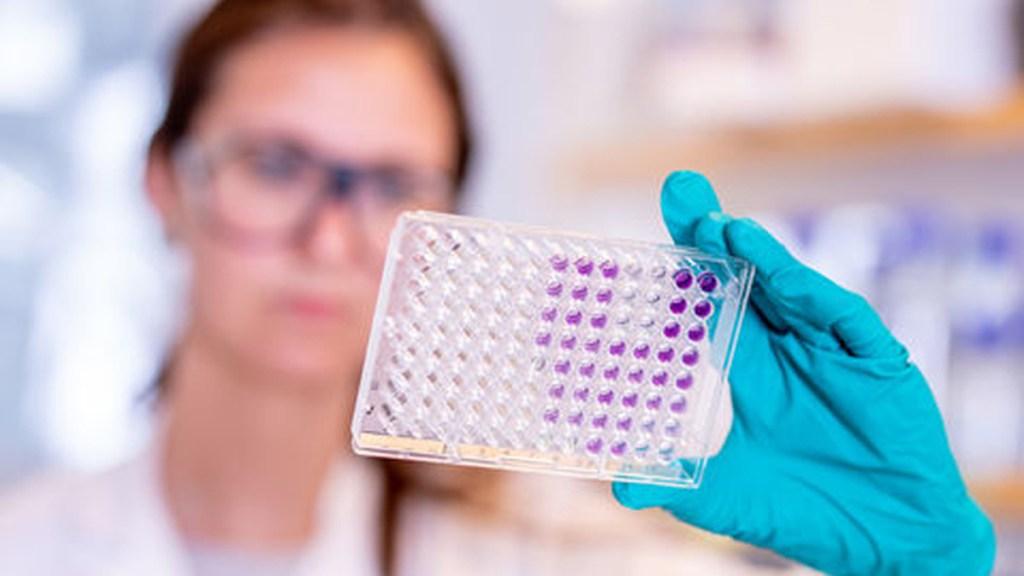 EE.UU. espera autorizar en abril distribución de vacuna contra COVID-19 de AstraZeneca - Desarrollo de vacuna contra COVID-19 de AstraZeneca/Oxford. Foto de AstraZeneca