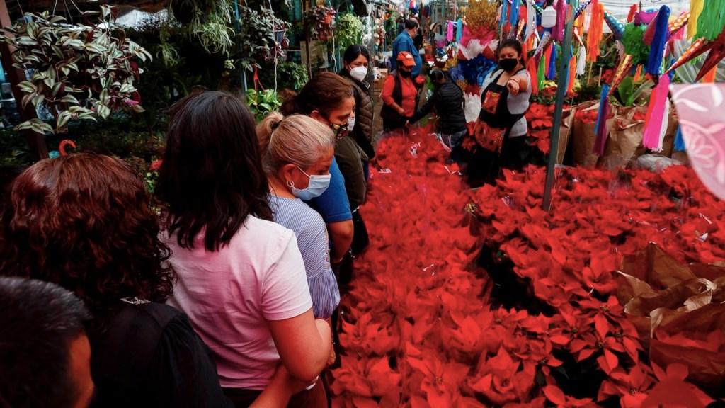 Pese a pandemia, flores de Nochebuena no faltan en los hogares mexicanos - Foto de EFE