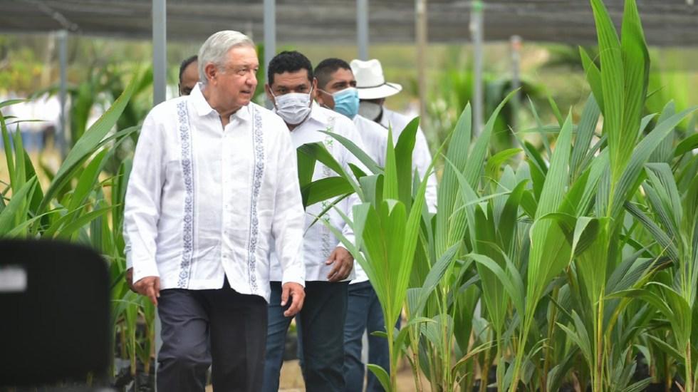 López Obrador seguirá subiendo vídeos a Facebook mientras no los censuren - Foto de lopezobrador.org.mx