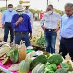 AMLO estima un crecimiento económico para México de entre 4 y 5 por ciento