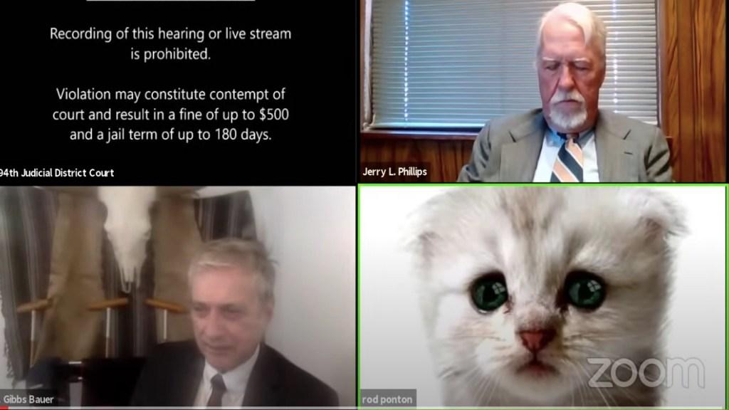 "#Video ""No soy un gato"": abogado activa por error filtro de gatito durante audiencia - Captura de pantalla"