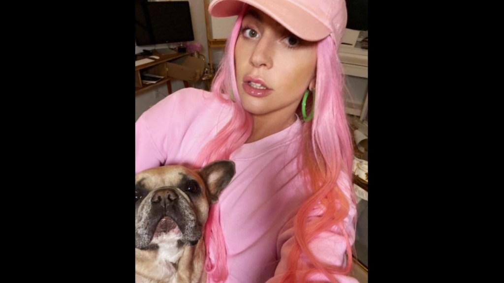 #Video Sujeto dispara a paseador y roba dos perros de Lady Gaga - Lady Gaga