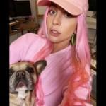 #Video Sujeto dispara a paseador y roba dos perros de Lady Gaga