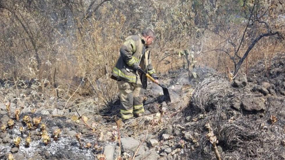 Se ha controlado 80 por ciento del incendio en la colonia Fuentes del Pedregal - Bomberos trabajan en la mitigación del fuego en incendio en Fuentes del Pedregal. Foto de Bomberos CDMX