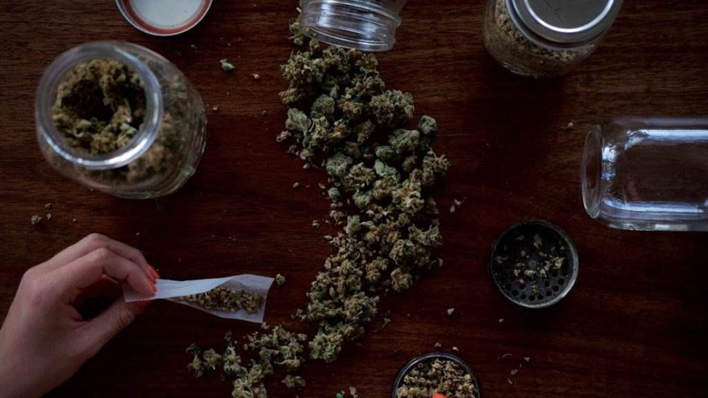 Senado solicitará a la Suprema Corte nuevo plazo para aprobar uso lúdico de la mariguana - Mariguana cannabis
