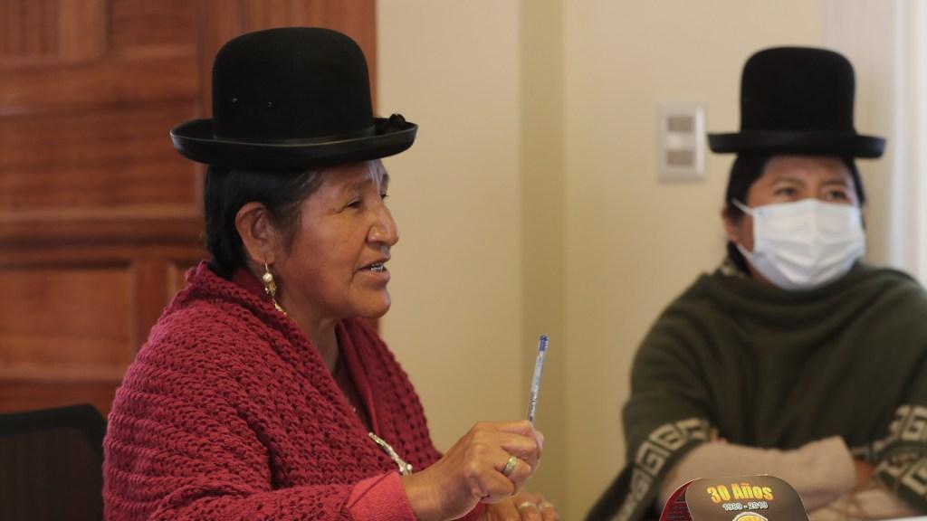 Cárcel para los infieles, la propuesta de las mujeres indígenas de Bolivia - Alicia Canaviri, directora del Centro de Desarrollo Integral de la Mujer Aymara (CDIMA), impulsora de castigar la infidelidad con cárcel. Foto de EFE