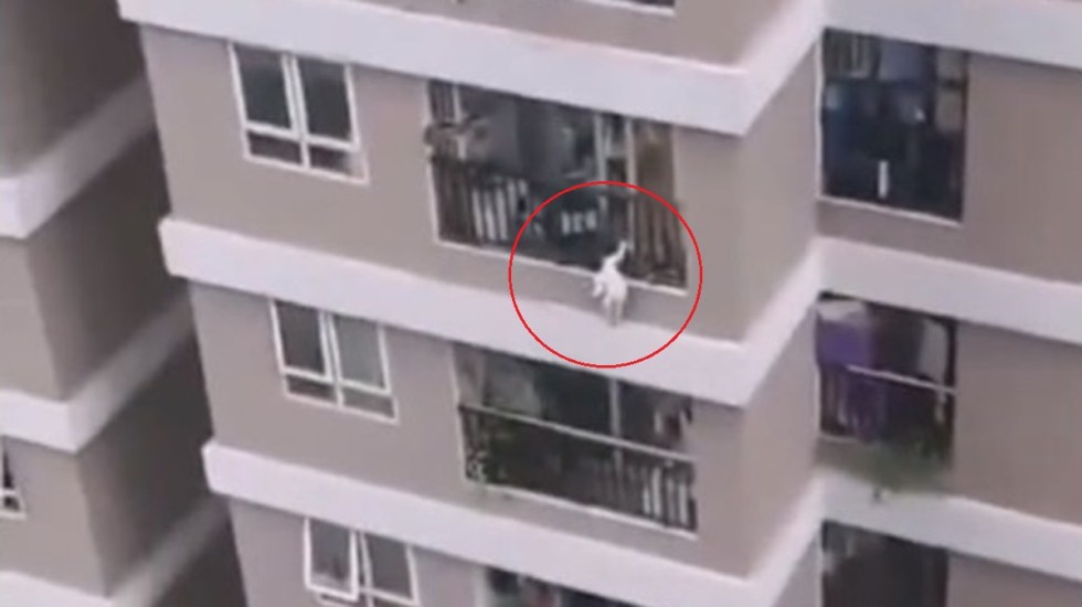 #Video Mensajero salva a niña que cayó desde el piso 12 de edificio - Niña a punto de caer de edificio en Vietnam. Captura de pantalla