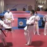 Valencia cuenta con el primer club LGTB de Taekwondo federado de España - Valencia cuenta con el primer club LGTB de Taekwondo federado de España. Foto de EFE