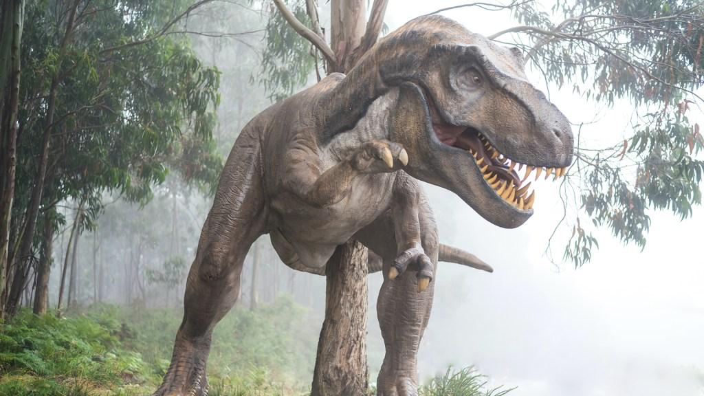 Existieron alrededor de 2 mil 500 millones de Tiranosaurios rex en el mundo - Ilustración de Tiranosaurios rex. Foto de Fausto García-Menéndez / Unsplash