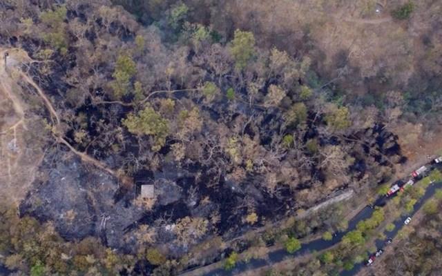 Elementos de Bomberos sofocaron un incendio en la tercera sección del Bosque de Chapultepec - Foto de EFE