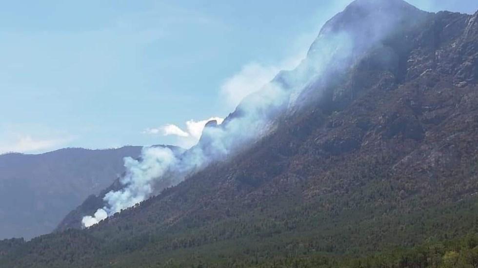 Hay cinco incendios forestales activos en Nuevo León: Protección Civil - incendios forestales Nuevo Leon 9abril21