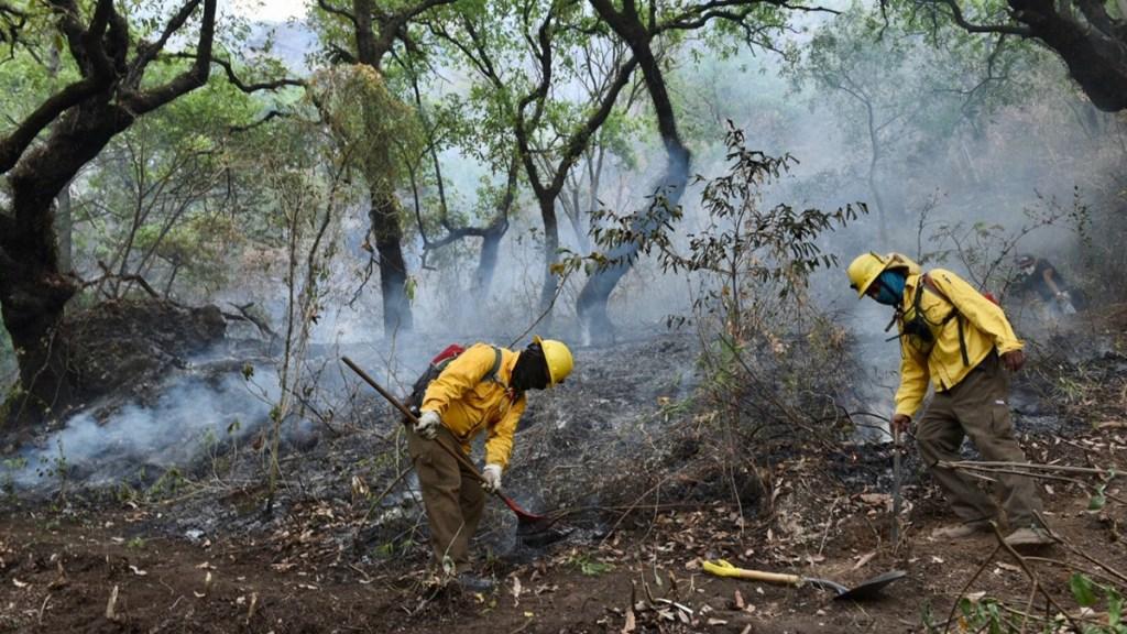 Controlan al 100 por ciento incendio en Tepoztlán, Morelos - Labores de extinción de incendio en Tepoztlán, Morelos. Foto de @CONAFOR