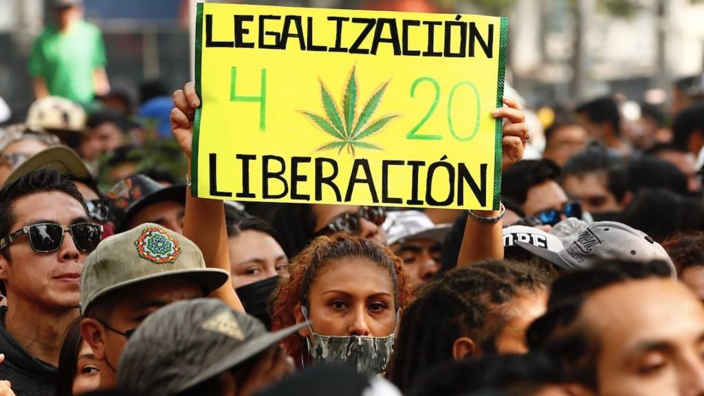 Senado aplaza dictamen de regulación de la mariguana - El Senado aplazó el dictamen para la regulación de la mariguana. Foto de EFE