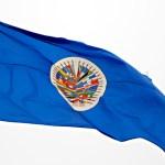"""Expresidentes piden a OEA acciones efectivas contra """"régimen"""" de Ortega - Nicaragua OEA banderas observadores"""