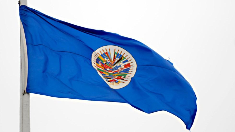 """Expresidentes piden a OEA acciones efectivas contra """"régimen"""" de Ortega - Nicaragua OEA banderas observadores Nicaragua"""