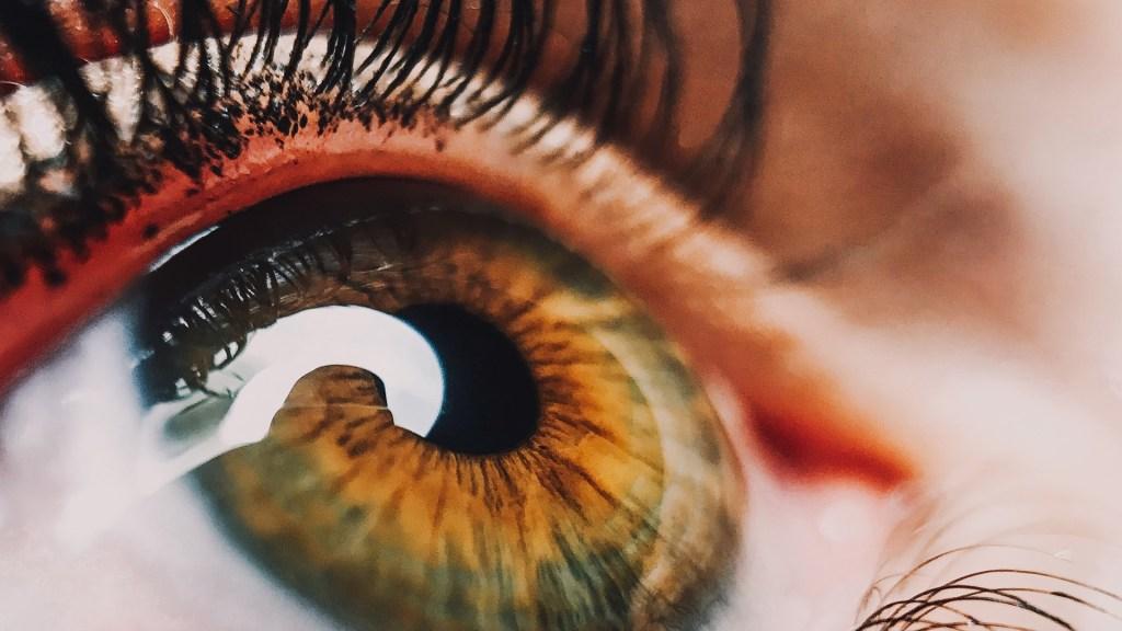 Mexicanos crean inteligencia artificial para detectar retinopatía diabética - Foto de Perchek Industrie en Unsplash
