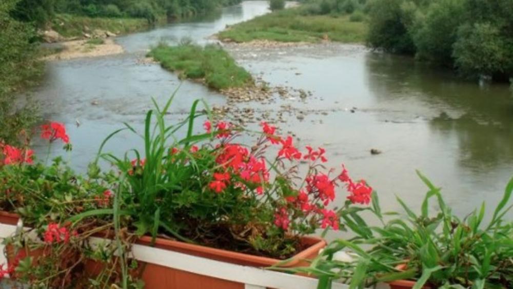 A las orillas del Río Timis - río