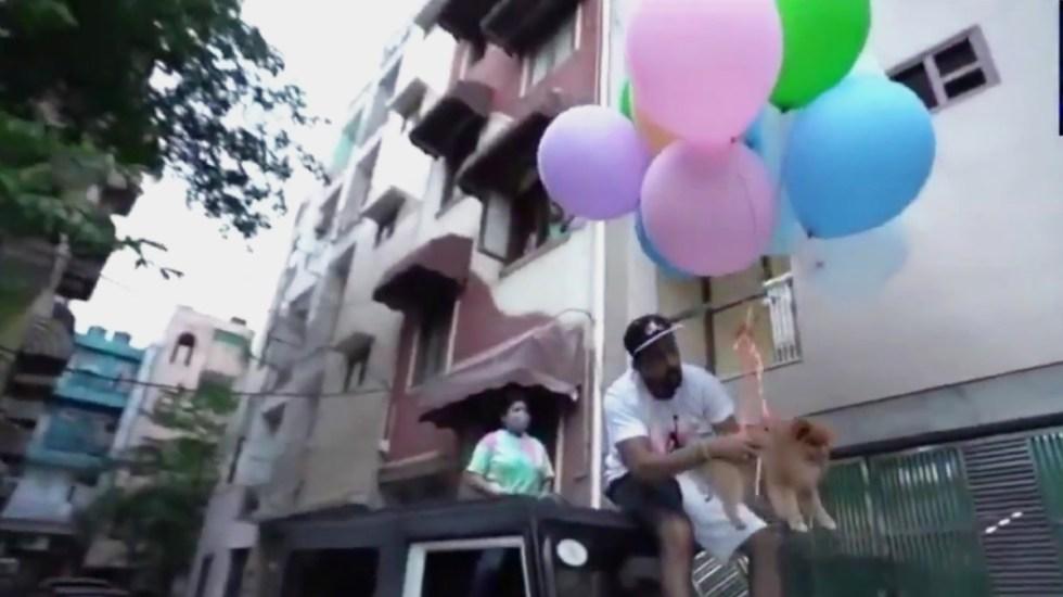 #Video Youtuber eleva a su perro con globos de helio; lo detienen por maltrato animal - Youtuber eleva a su perro con globos de helio. Captura de pantalla
