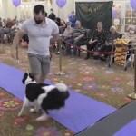 Desfile de perros alienta a residentes de geriátrico tras aislamiento de 2020