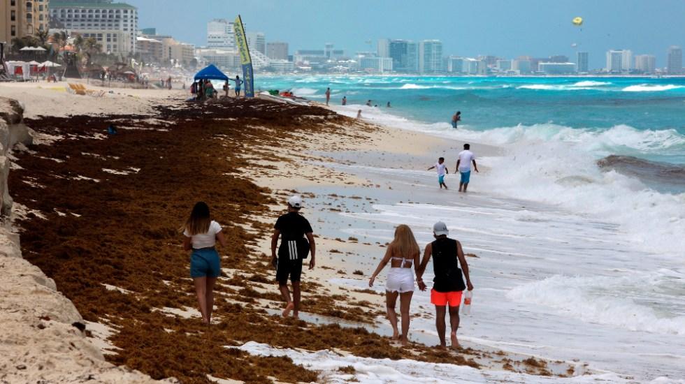 Aumenta sargazo en playas del Caribe mexicano - sargazo Cancún Quintana Roo