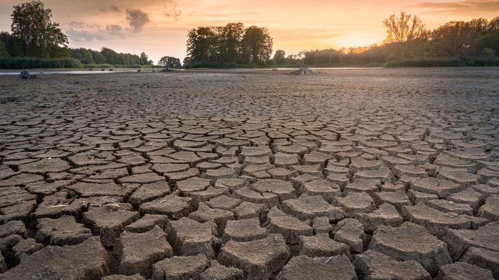 Sequía en México afectará a energía, minería y bebidas: Moody's - Sequía México