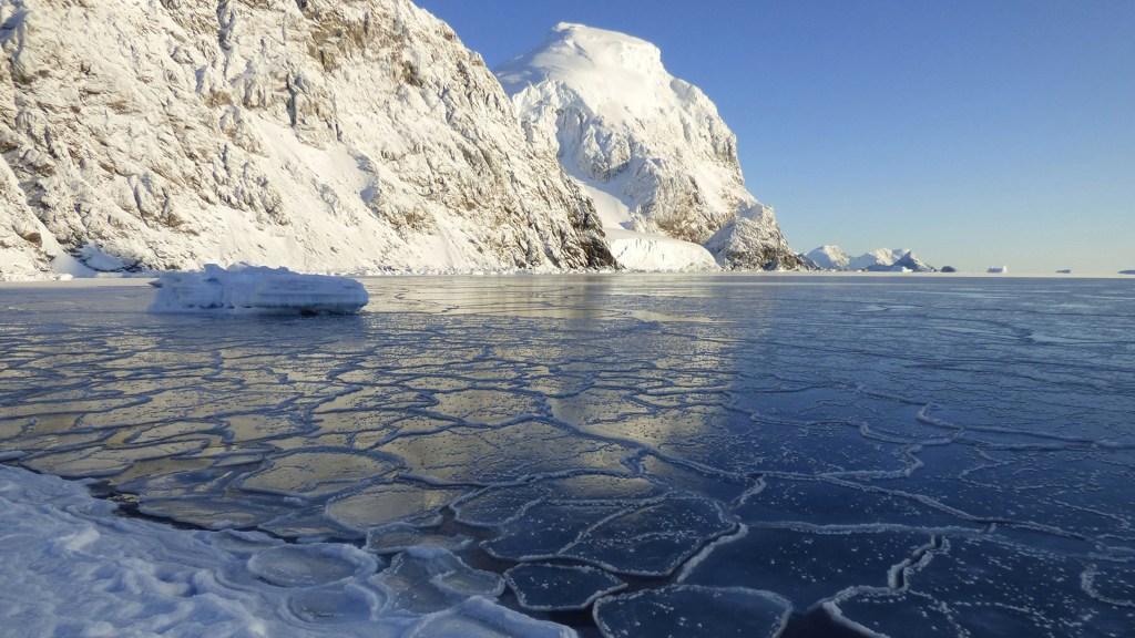 OMM confirma temperatura récord en la Antártida de 18.3 grados - Antártida. Foto de OMM / Diego Ferrer