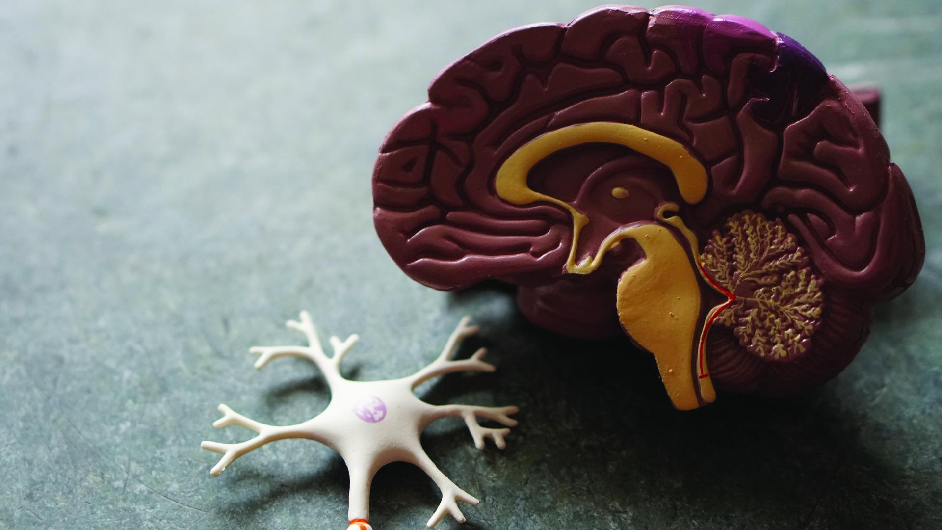 Asocian COVID-19 con un aumento de biomarcadores del alzheimer en sangre. Foto de Robina Weermeijer para Unsplash