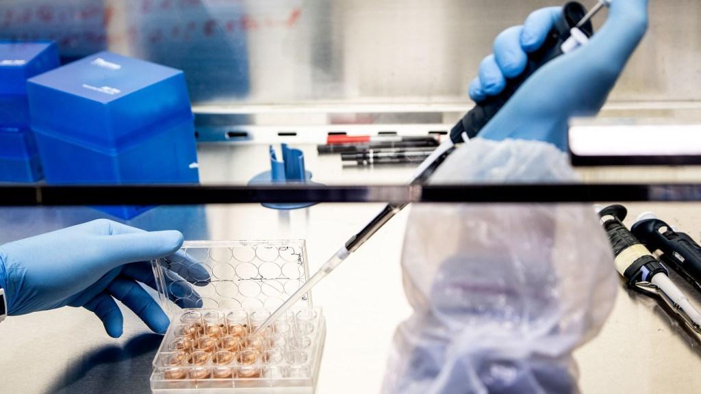 México albergaría ensayo fase III de vacuna italiana - Investigación de ReiThera para vacuna contra COVID-19. Foto de @ReiThera-Srl