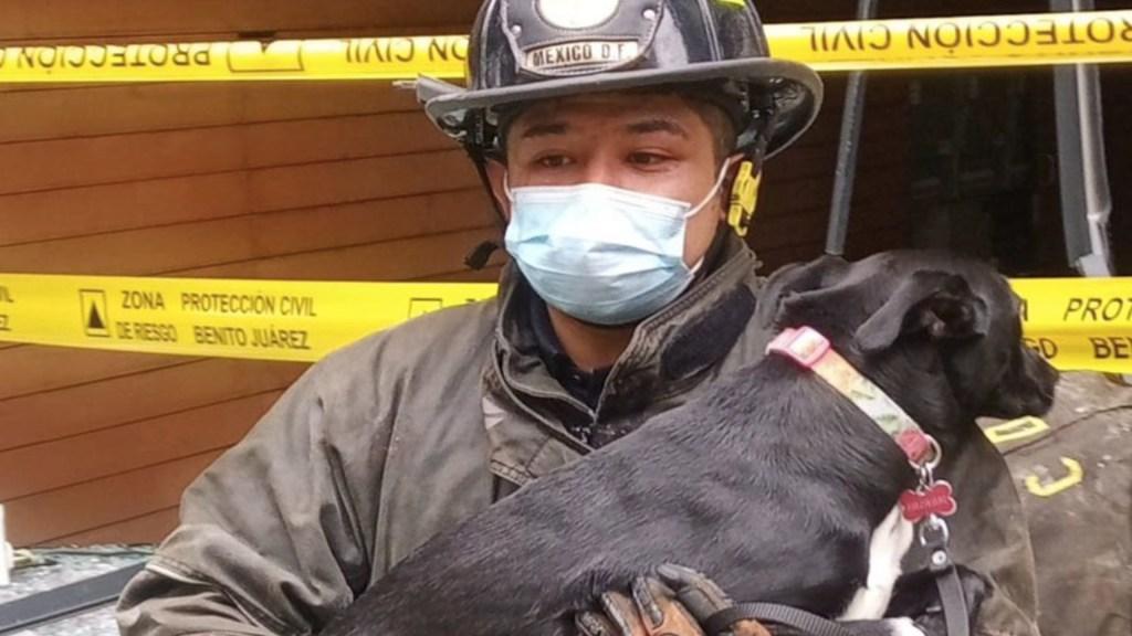 Rescatan ileso a perro tras explosión en edificio de Benito Juárez - Rescatan ileso a perro de edificio que explotó en Benito Juárez. Foto de Bomberos CDMX