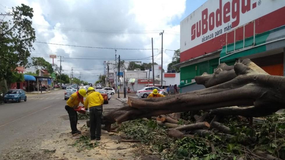 Instala Gobierno de la Ciudad de México centros de acopio para ayudar a Veracruz tras impacto de Grace - centros de acopio Veracruz huracan grace impacto daños 2