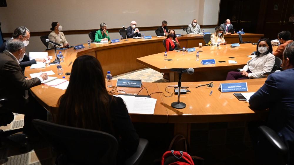 Insabi, Unops y farmacéuticos se comprometen con abasto de medicamentos en México - Reunión Insabi UNOPS farmacéuticos medicamentos