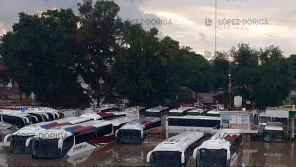#Video Suman 17 muertos por inundación en hospital del IMSS en Tula, Hidalgo - Foto de López-Dóriga Digital.