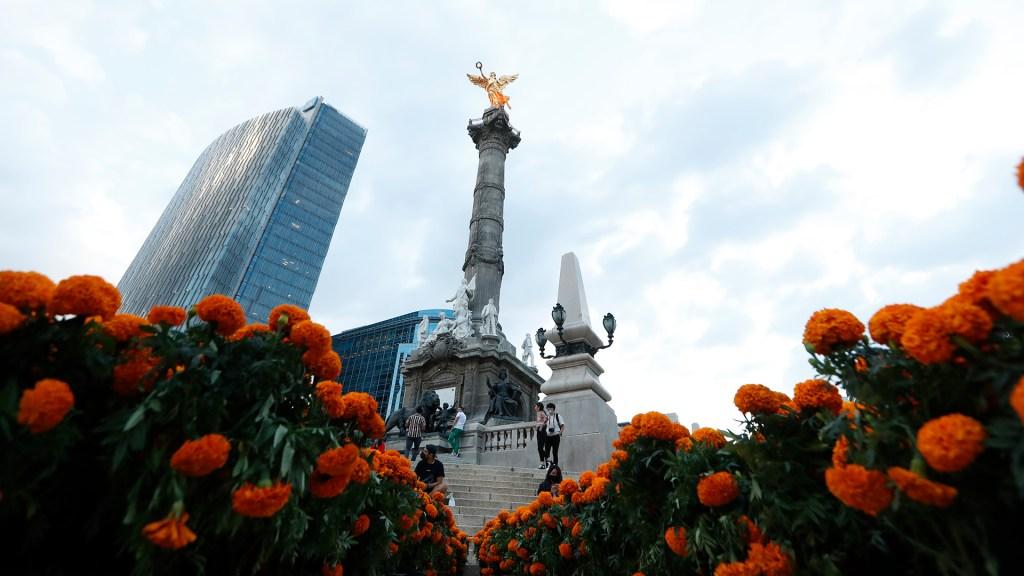 Día de Muertos llega a la Ciudad de México con miles de flores de cempasúchil - Flores de cempasúchil adornan la Ciudad de México por Día de Muertos