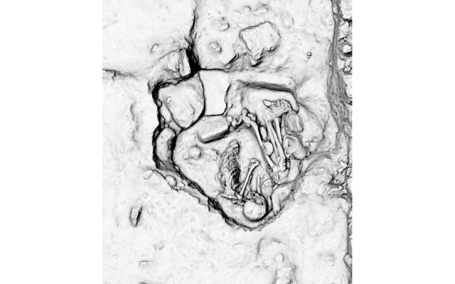 Continúan descubrimientos arqueológicos en Tren Maya - Fotografía cedida por el Instituto Nacional de Antropología e Historia (INAH) donde se observa un descubrimiento arqueológico en el tramo 1 del Tren Maya que va de las ciudades de Palenque a Escárcega (México). Foto de EFE/ Instituto Nacional De Antropología E Historia