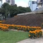 Capital de México prepara el Día de Muertos con miles de flores de cempasúchil