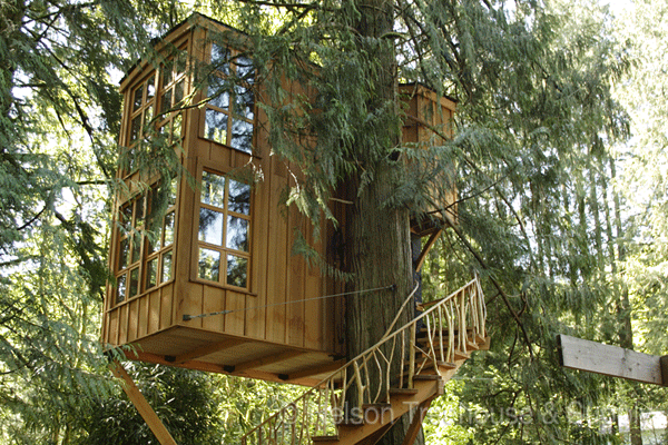 Treehouse Designs That Will Amaze You! Dig This Design