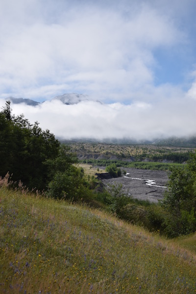 view of coldwater creek