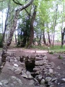 Fontaine de Barenton (Brocéliande)