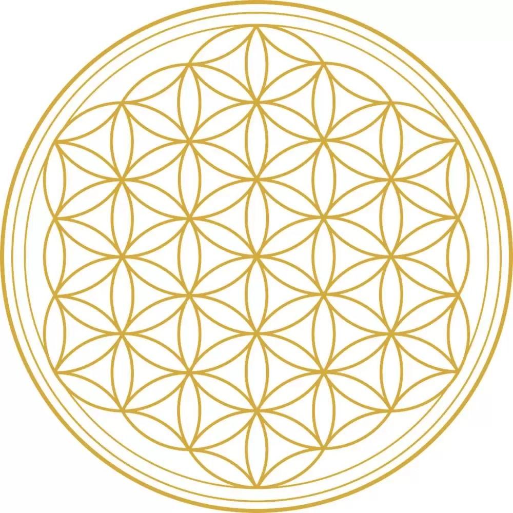 La fleur de vie, une onde de forme très spéciale