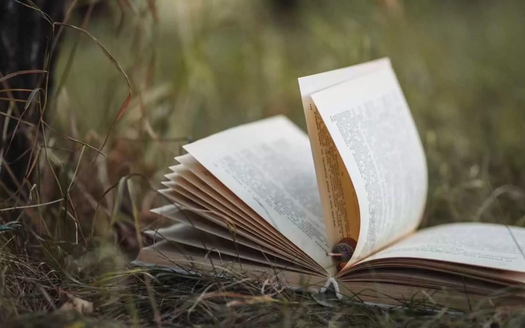 3 livres sur le chamanisme à lire absolument !