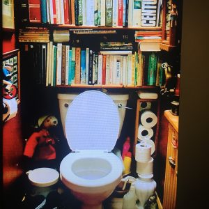 Toilet annex boekenkast