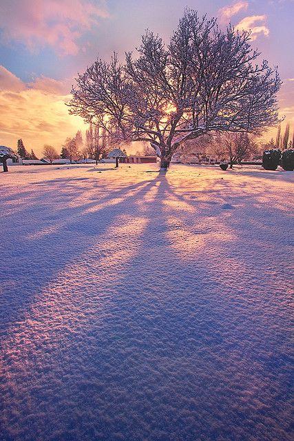 inspiratie-de-iarna-3
