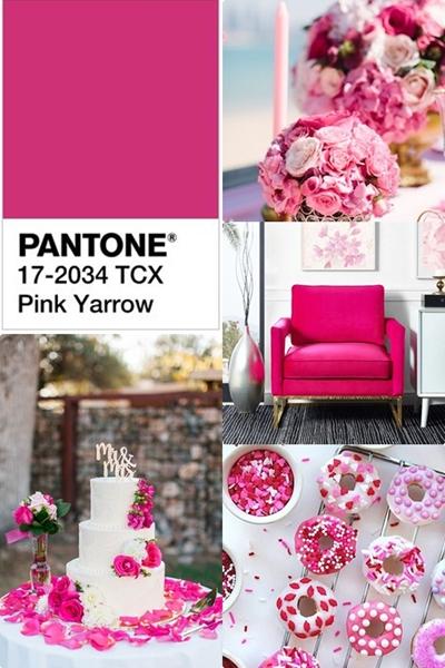 culorile-anului-2017-pantone-pink-yarrow