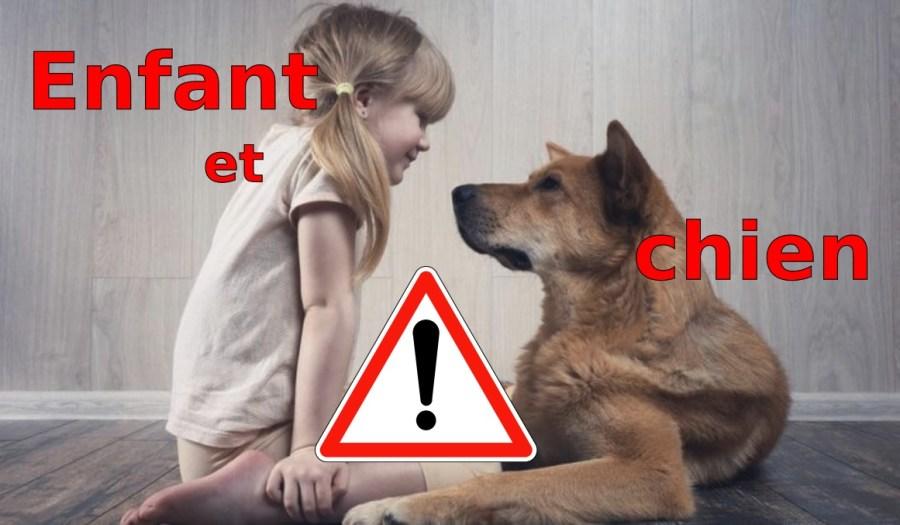 chien-enfant_l-oree-du-loup