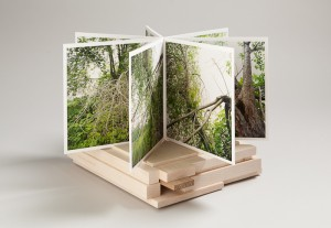 Image of Photo Book