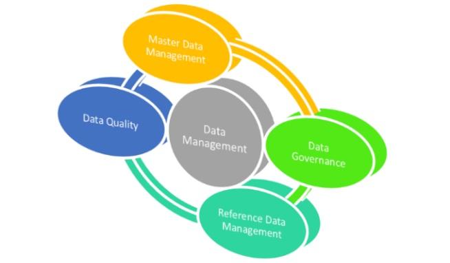 Understanding How a Data Management Program Supports Your Marketing Effort - Blog Lorelei Web Design