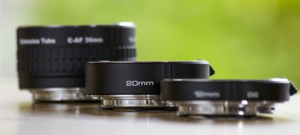 Can You Take Macro Photos Without Macro Lenses? - Blog Lorelei Web Design